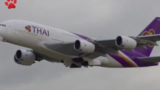 Download Plane Spotting Autumn Clouds* Close Up Heavy Takeoffs*London Heathrow ✈️ Video