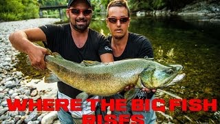 Download WHERE THE BIG FISH RISES, Part 1 Slovenia MOVIE ( Fly fishing, Marble ″ MARMORATA ″ trout ) LEECH Video
