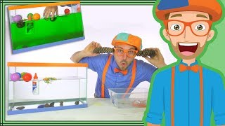 Download 1 Hour Blippi Compilation | Educational Videos for Children - Sink or Float Video