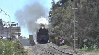 Download Echuca Steam Train Loud Whistle Arrival with Steamrail R761 & K153 - Australian Trains / Dampfzug Video