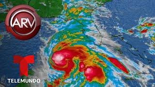 Download Huracán Michael avanza amenazante a la Florida | Al Rojo Vivo | Telemundo Video