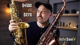 Download Cheapest Sax on Amazon VS My Professional Alto Saxophone Video