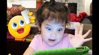 Download Miya has a Selfie Problem - ItsJudysLife Vlogs Video