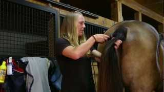 Download ″Bathing! And a Trim!″ How to Trim the Mane, Tail, Muzzle, Ears, & Bridle Path Video