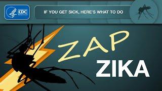 Download Zap Zika: If You Get Sick Video