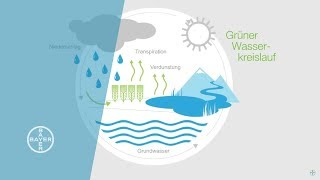 Download Surviving Water Scarcity Video