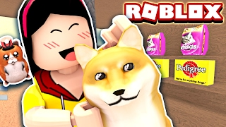 Download Adopting a Crazy Doge!! He's so CRAY! - Roblox Pet Shop Tycoon Mini Game - DOLLASTIC PLAYS! Video