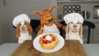 Download Dogs Bake Shortcake w/Creature: Chef Dogs Maymo & Potpie Video
