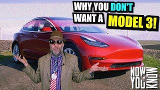 Download Why you don't want a Model 3! - Vinny Bamboozalini Video