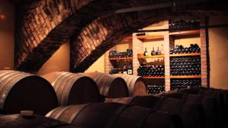 Download Hungarian Wine Roadshow - 11' (2014) Video