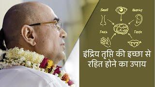 Download इन्द्रिय तृप्ति की इच्छा से रहित होने का उपाय - H. G. Vrindavanchandra Das, GIVEGITA Video