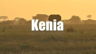 Download Kenia Safari Video