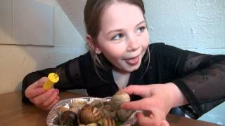 Download Eating snails. Video