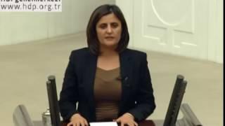 Download AKP Ağrı Milletvekili Ağrı'da yaşamıyor heralde Video