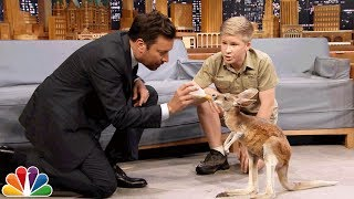 Download Robert Irwin and Jimmy Feed a Baby Kangaroo Video