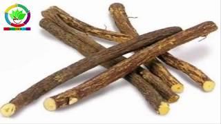 Download पीपल की लकड़ी के ऐसे फायदे जो पुरुषों के लिए ख़ास है tips Video