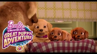 Download Meet Honey, Rookie, and DJ | Barbie & Her Sisters in a Great Puppy Adventure | Barbie Video