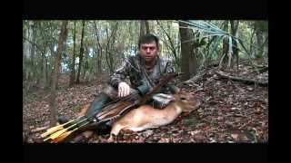 Download Persimmons Pay Off (Traditional Bowhunt/Public Land) Video