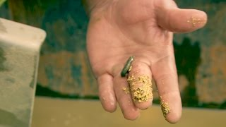 Download Look at That Chunky Gold In Parker's Sluicebox! | Gold Rush Video