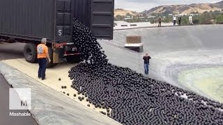 Download LA throws 96 million 'shade balls' at its water shortage — and it's mesmerizing | Mashable Video