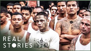 Download The People Vs. The Maras (Crime Documentary) | Real Stories Video