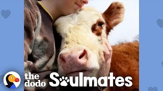 Download Girl Changes Her Whole Life To Save Her Cow Best Friend | The Dodo Soulmates Video