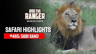 Download Safari Highlights #465: 24 - 28 March 2017 (Latest Sightings) (4K Video) Video