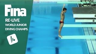 Download Re-Live - Day 2 Final - FINA World Junior Diving Championships 2016 - Kazan (RUS) Video