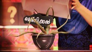 Download Dhe Chef | Ep 63 - Tasty healthy 'Aloe vera'! | Mazhavil Manorama Video