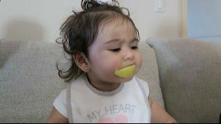 Download BABY VS LEMON Video