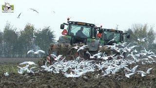 Download John Deere 6210R en Kverneland 5 schaar wentelploegen loonbedrijf Meiland uit Azewijn Trekkerweb Video