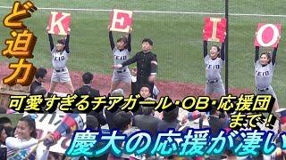 Download 慶応大学の応援団が凄すぎる!チアガール華やか過ぎ! Video