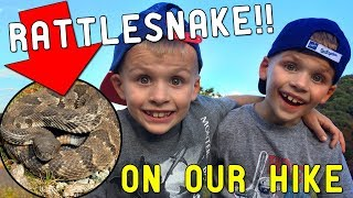 Download Scary Rattle Snake Encounter! Video