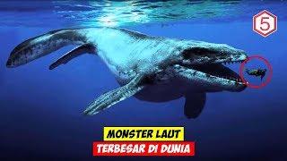 Download SEGEDE KAPAL ! 5 MONSTER LAUT TERBESAR SEPANJANG SEJARAH DUNIA ! Video