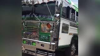 Download Primer Bus Show El Salvador 2019 Video