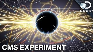 Download How To Design An Experiment For The Large Hadron Collider Video