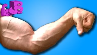 Download CALVES & FOREARMS - Anatomy of a BUFF DUDE Video