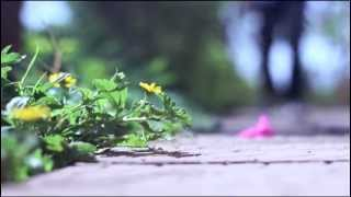 Download Save Nature Safe Yourself - A Short Film Video