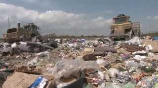 Download Tossed Out: Food Waste in America Video