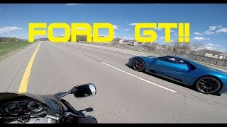 Download HAYABUSA CHASING A FORD GT Video