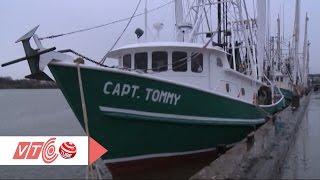 Download Tàu đánh cá triệu đô của người Việt ở Texas, Mỹ | VTC Video