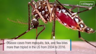 Download Illnesses on the Rise from Mosquito, Tick, and Flea Bites, May 2018, Vital Signs Video