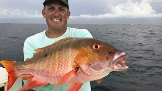 Download Mutton Snapper Catch Clean Cook! Tasty Tuesday! Deer Meat For Dinner! Video