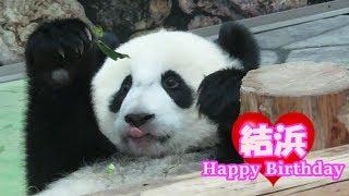 Download ハッピーバースデー結浜♪ 1歳のお誕生日おめでとう!! ~結浜の成長記録~ #アドベンチャーワールド #ハッピーパンダマンスリー Video