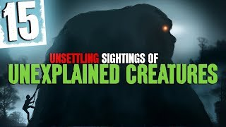 Download 15 Unexplained Creature Sightings with Forest Sounds and Water Sound Effects - Darkness Prevails Video