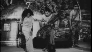 Download mental hospital comedy scene in ntr tikka sankarayya Video