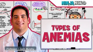 Download Hematology | Types of Anemias Video