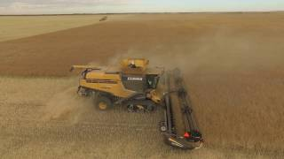 Download Millhouse Farms Harvest 2016 Video