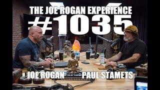Download Joe Rogan Experience #1035 - Paul Stamets Video