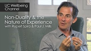 Download Non-Duality and the Nature of Experience with Rupert Spira and Paul J. Mills Video